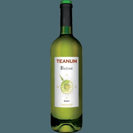 FAVUGNË BIANCO 2017 - CANTINE TEANUM