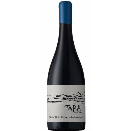 RED WINE N°2 2016 - SYRAH - TARA