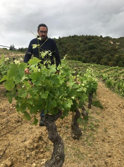Domaine Sous la Montagne - Sébastien Calduch - Côtes du Roussillon Villages