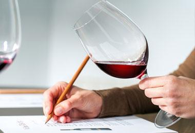 fournir beaucoup de moins cher qualité parfaite Boutique accessoires vin et champagne. La passion de l ...