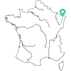 Carte de l'appellation Gewurztraminer