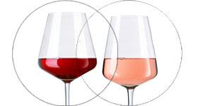 Vins rouges et rose Carignan