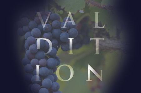 Domaine de Valdition, vins de Provence