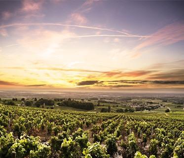 Beaujolais, zoom région