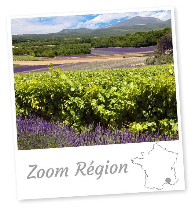 Vins elu meilleur site de vente de vin sur internet depuis 2002 vinatis - Meilleur vente sur internet ...