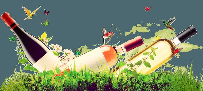 foire aux vins printemps du 8 mars au 2 avril 2019 vinatis. Black Bedroom Furniture Sets. Home Design Ideas