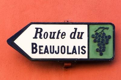 Domaine des Terres Dorées, Beaujolais