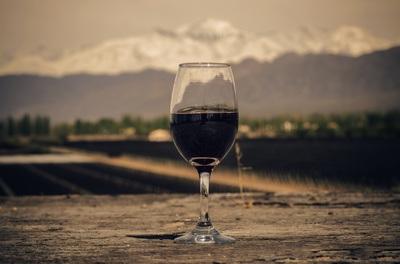 Malbec, la révolution du vin argentin