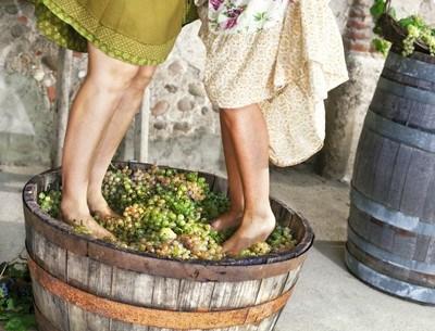Roséwein kann aus weißen und roten Trauben erzeugt werden.