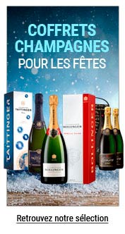 sélection champagnes pour noël à petit prix